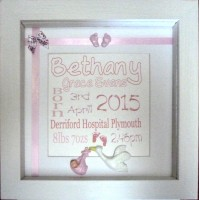 3D Stork Birth Name Details Frame PINK