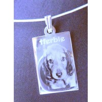 Pet Photo Engraved Necklace