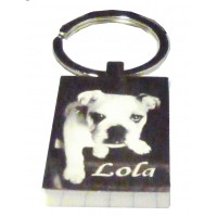 Pet Photo Engraved Key Ring